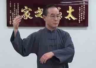 Lee Chan :: A Wonderful Performance of Professor Cheng Man Ching's Form